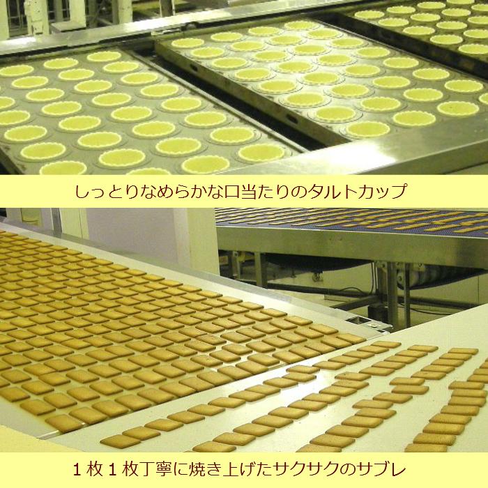 タルトケーキ レーズンサンド 製造ライン