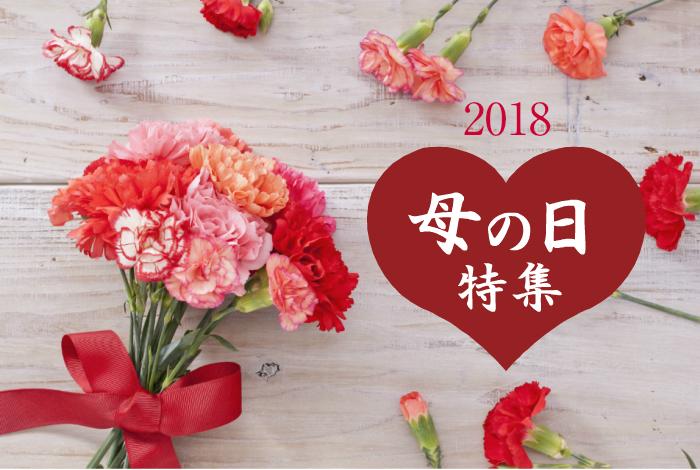 【 同梱専用 】 2018 母の日 カーネーション / 造花 18cm