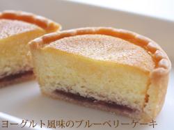 ヨーグルト風味のブルーベリーケーキ