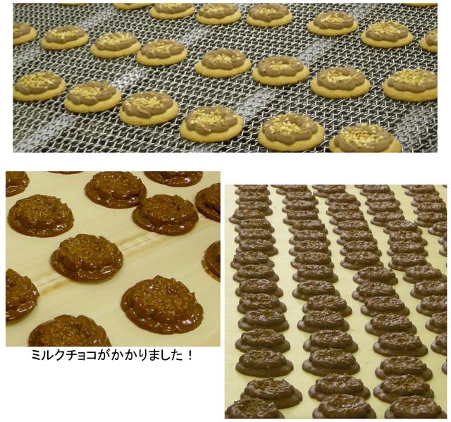 ロシアケーキ製造ライン(ミルクチョコ)