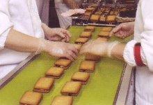 フルーツサブレ・サンドクッキー製造ライン